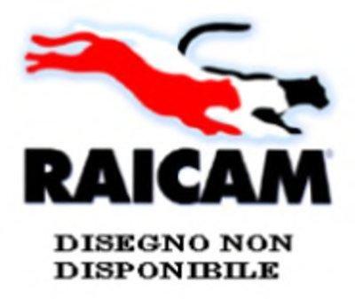 Комплект тормозных колодок, стояночная тормозная система RAICAM купить
