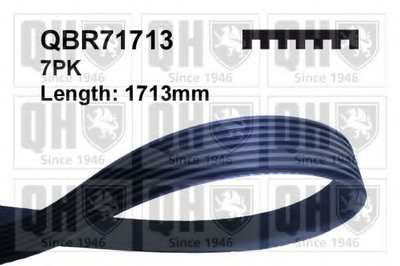 V-Ribbed Belts QUINTON HAZELL купить