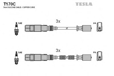 TESLA T170C