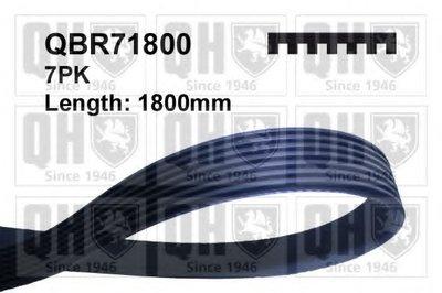 V-Ribbed Belts QUINTON HAZELL купить