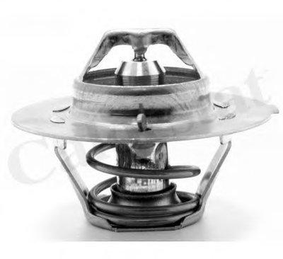 Термостат, охлаждающая жидкость CALORSTAT by Vernet купить