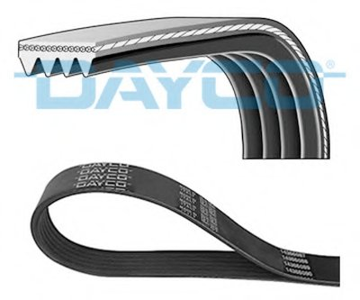 V-Ribbed Belts DAYCO купить