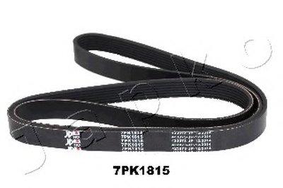 V-Ribbed Belts JAPKO купить