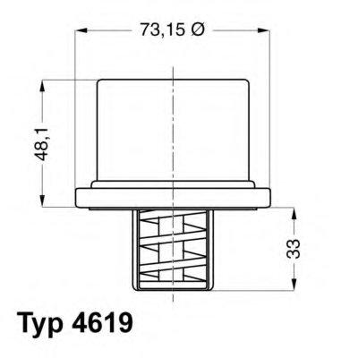 461986 WAHLER Термостат, охлаждающая жидкость